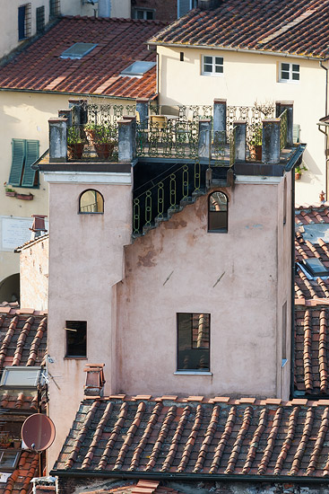 Lucca: view from Torre Guinigi