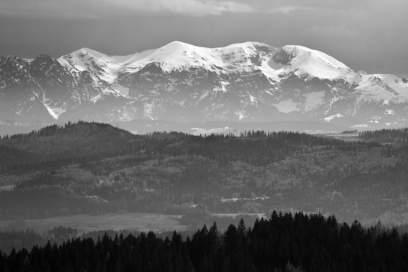 Tatra Mountains from Polana Gronie