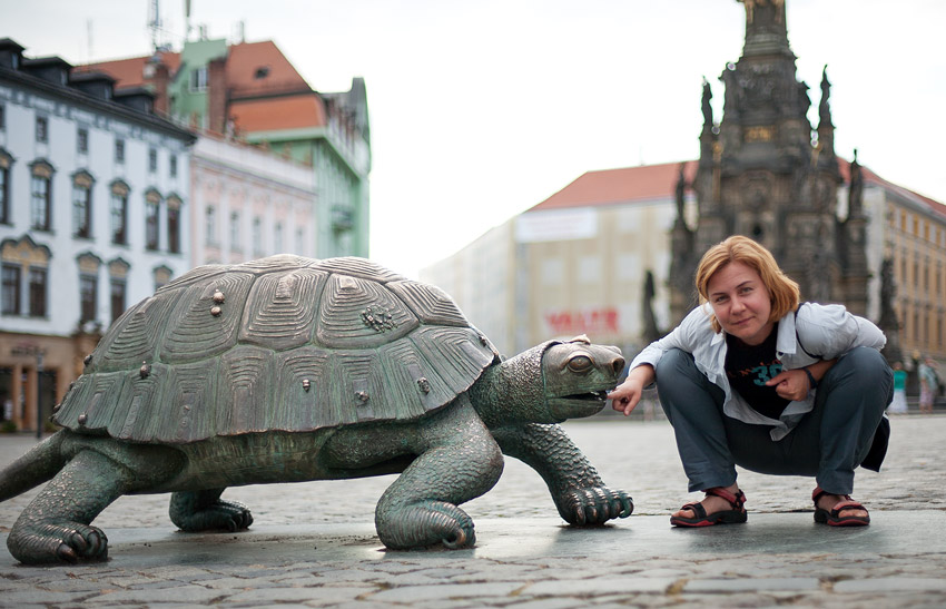 The Olomouc turtle