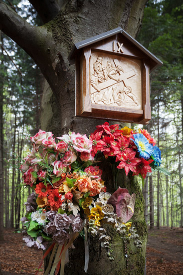 A shrine in the Galarze forest