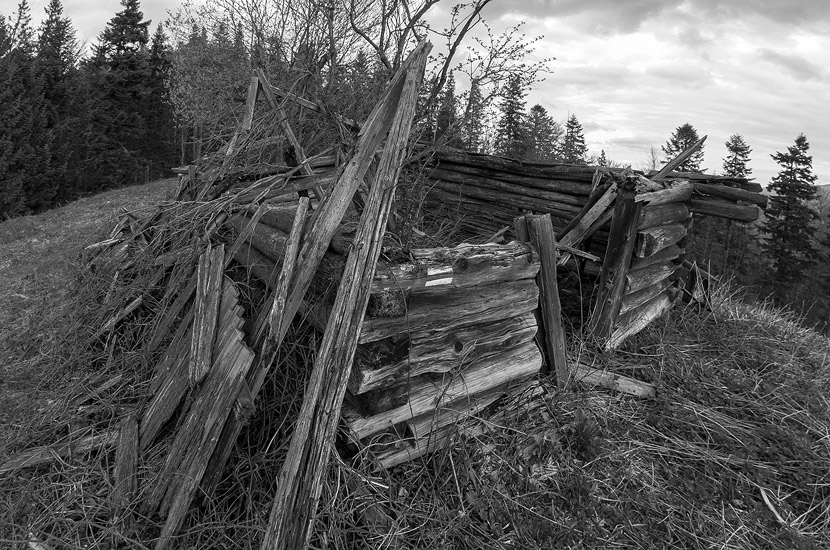A ruined hut, Solnisko, Gorce Mountains